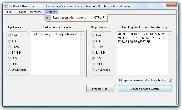 Binary to hex converter software